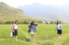 Hướng dẫn du lịch Mộc Châu từ Sài Gòn – TP Hồ Chí Minh1